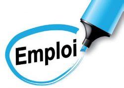 L'agriculture recrute – Offres d'emploi ANEFA 49