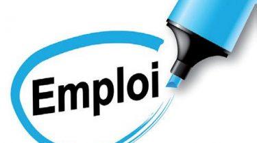 ANEFA 49 – Offres d'emploi