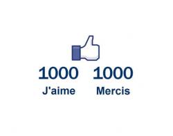 1000 J'aime sur notre page Facebook !
