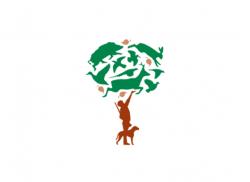 Chasseurs d'Anjou – Lettre d'information – Octobre 2020