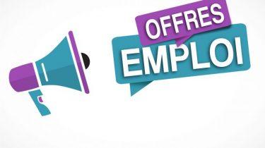 Offres d'emploi – ANEFA 49